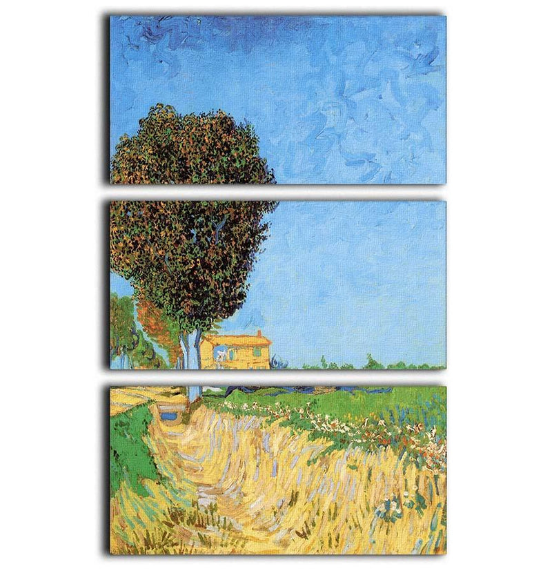 A Lane near Arles by Van Gogh 3 Split Panel Canvas Print - Canvas Art Rocks - 1