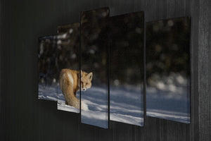 A Red Fox turns back to look at the camera 5 Split Panel Canvas - Canvas Art Rocks - 2