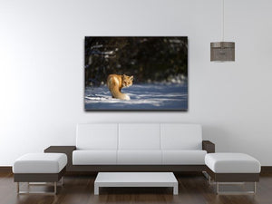 A Red Fox turns back to look at the camera Canvas Print or Poster - Canvas Art Rocks - 4