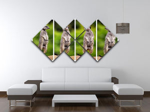 A collage of meerkats 4 Square Multi Panel Canvas - Canvas Art Rocks - 3