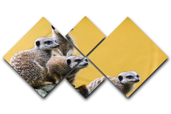 A group of meerkats seen on top of a rock 4 Square Multi Panel Canvas