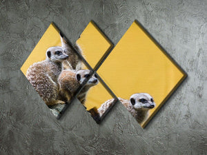 A group of meerkats seen on top of a rock 4 Square Multi Panel Canvas - Canvas Art Rocks - 2