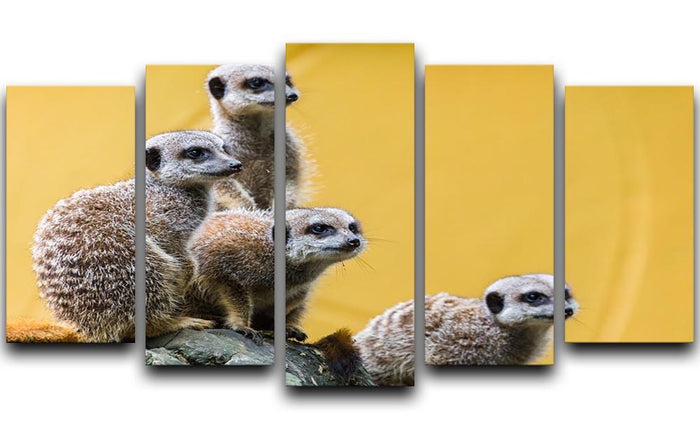 A group of meerkats seen on top of a rock 5 Split Panel Canvas