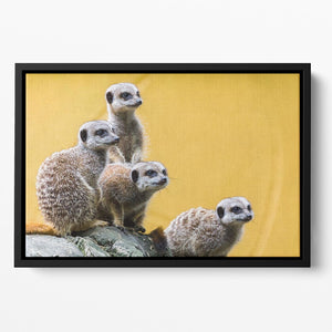 A group of meerkats seen on top of a rock Floating Framed Canvas - Canvas Art Rocks - 2
