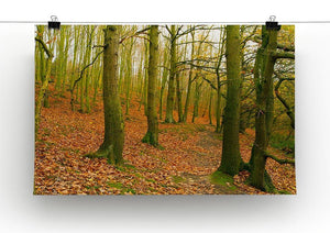 A path through the woods at Haw park Canvas Print or Poster - Canvas Art Rocks - 2