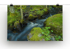 A small Canvas Print or Poster - Canvas Art Rocks - 2