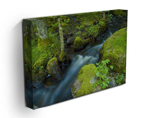 A small Canvas Print or Poster - Canvas Art Rocks - 3