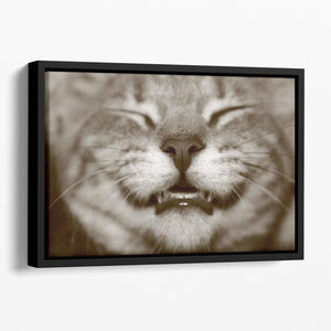 A smiling kitten Floating Framed Canvas - Canvas Art Rocks - 1