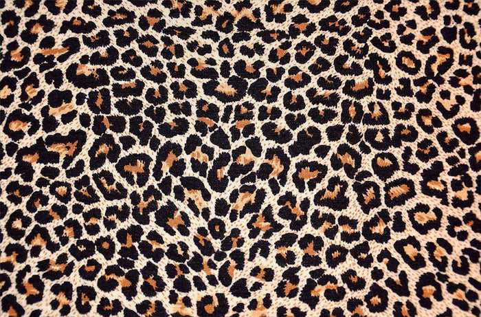 Abstract texture of leopard Wall Mural Wallpaper