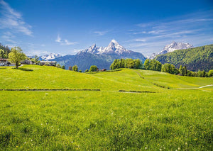 Alps with fresh green meadow Wall Mural Wallpaper - Canvas Art Rocks - 1