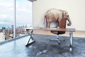 An elephant calm in the room near white wall. Creative concept Wall Mural Wallpaper - Canvas Art Rocks - 3