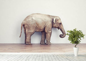 An elephant calm in the room near white wall. Creative concept Wall Mural Wallpaper - Canvas Art Rocks - 4