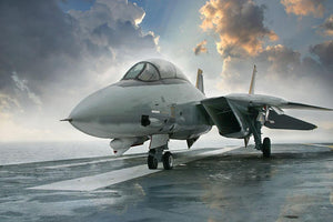 An jet fighter sits on the deck Wall Mural Wallpaper - Canvas Art Rocks - 1