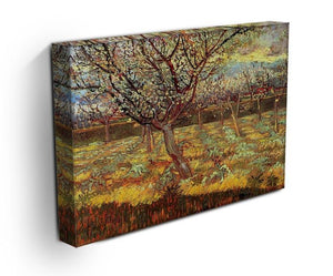 Apricot Trees in Blossom by Van Gogh Canvas Print & Poster - Canvas Art Rocks - 3