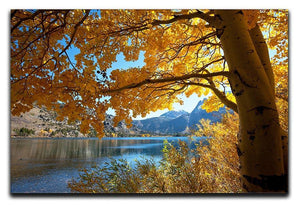 Autumn mountain lake Canvas Print or Poster  - Canvas Art Rocks - 1