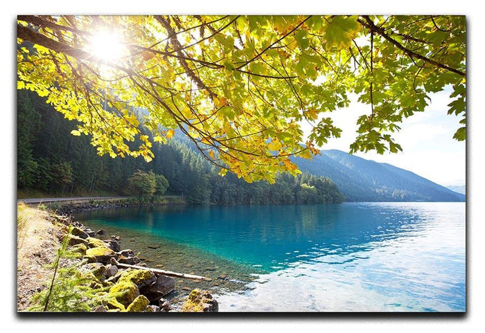 Autumn sun flare on lake Canvas Print or Poster