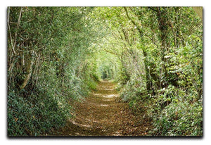 Avenue of trees Canvas Print or Poster  - Canvas Art Rocks - 1