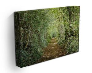 Avenue of trees Canvas Print or Poster - Canvas Art Rocks - 3