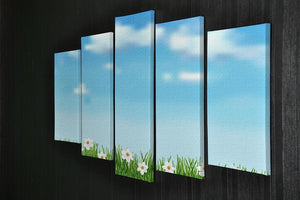 Background with grass and white flowers 5 Split Panel Canvas  - Canvas Art Rocks - 2