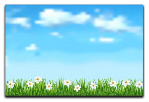 Background with grass and white flowers Canvas Print or Poster  - Canvas Art Rocks - 1
