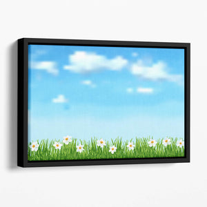 Background with grass and white flowers Floating Framed Canvas