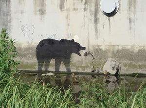 Banksy Bear Wall Mural Wallpaper - Canvas Art Rocks - 1