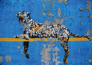 Banksy Cheetah Wall Mural Wallpaper - Canvas Art Rocks - 1