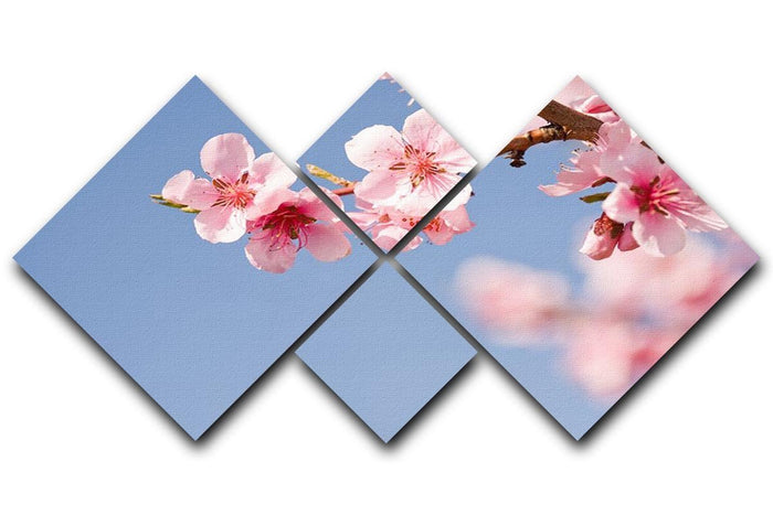 Beautiful colorful fresh spring flowers 4 Square Multi Panel Canvas