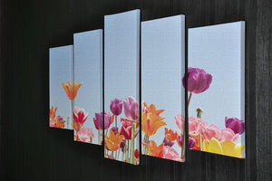 Beautiful coloured flowers 5 Split Panel Canvas  - Canvas Art Rocks - 2