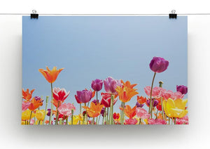 Beautiful coloured flowers Canvas Print or Poster - Canvas Art Rocks - 2