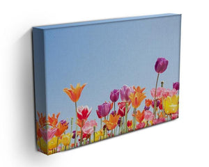 Beautiful coloured flowers Canvas Print or Poster - Canvas Art Rocks - 3