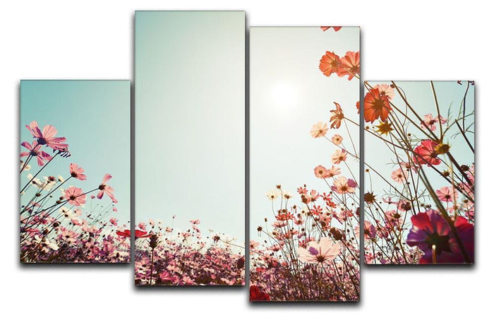 Beautiful cosmos flower field 4 Split Panel Canvas