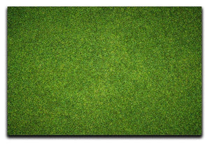 Beautiful green grass Canvas Print or Poster  - Canvas Art Rocks - 1