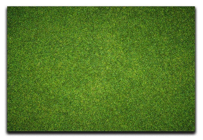 Beautiful green grass Canvas Print or Poster