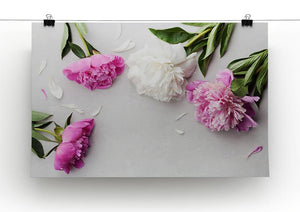 Beautiful pink and white peony flowers Canvas Print or Poster - Canvas Art Rocks - 2