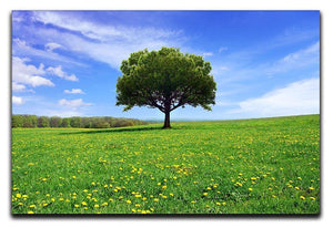 Beautiful spring landscape Canvas Print or Poster  - Canvas Art Rocks - 1