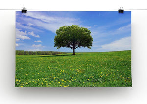Beautiful spring landscape Canvas Print or Poster - Canvas Art Rocks - 2