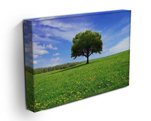 Beautiful spring landscape Canvas Print or Poster - Canvas Art Rocks - 3