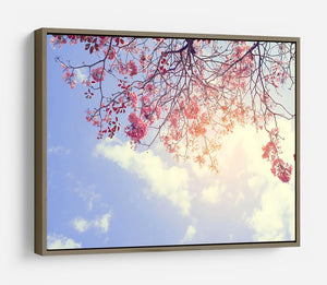 Beautiful tree pink flower in spring HD Metal Print