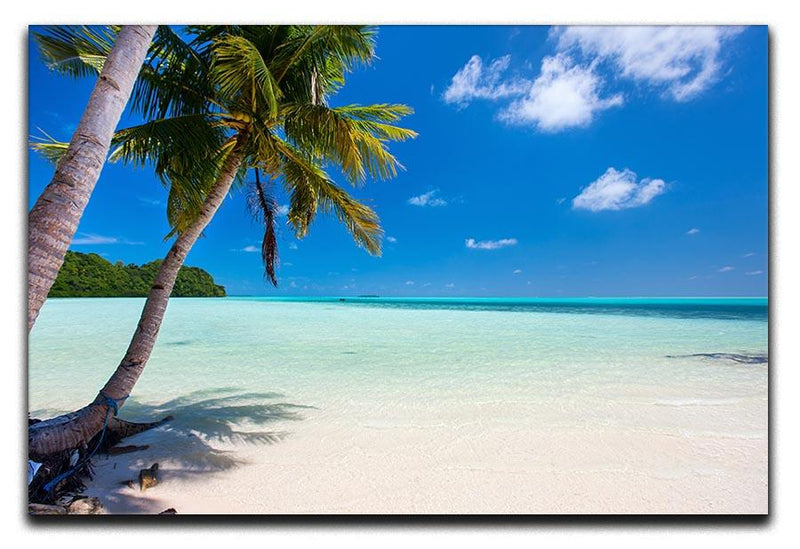 Beautiful tropical beach with palm trees Canvas Print or Poster  - Canvas Art Rocks - 1