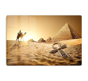 Bedouin on camel HD Metal Print
