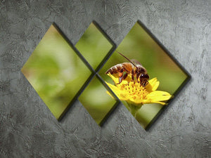 Bee and small sunflower 4 Square Multi Panel Canvas  - Canvas Art Rocks - 2