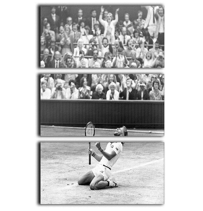 Bjorn Borg celebrates at Wimbledon 3 Split Panel Canvas Print - Canvas Art Rocks - 1