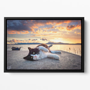 Black and white cat lying under a dramatic sunset on the lagoon Floating Framed Canvas - Canvas Art Rocks - 2
