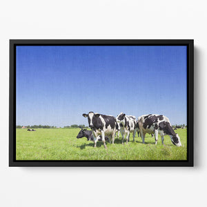 Black and white cows Floating Framed Canvas - Canvas Art Rocks - 2
