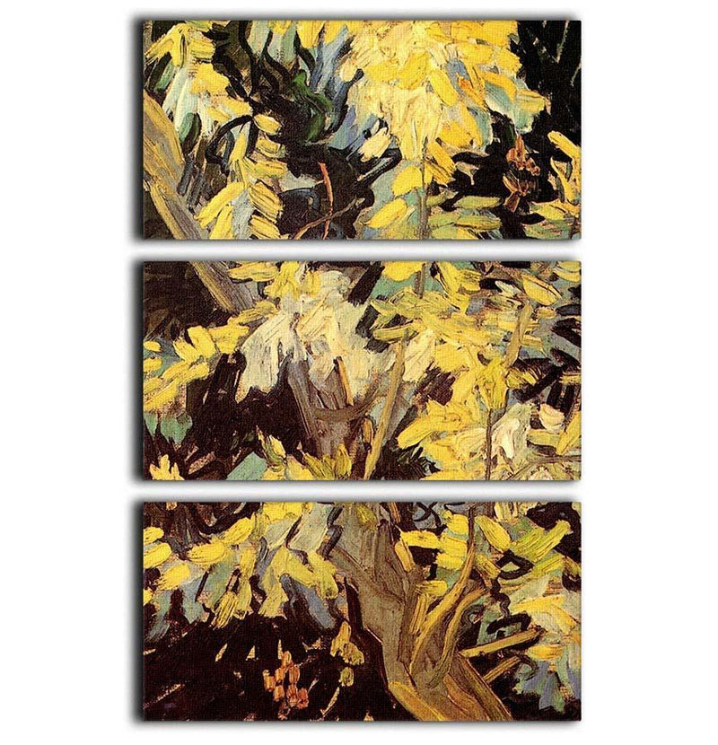 Blossoming Acacia Branches by Van Gogh 3 Split Panel Canvas Print - Canvas Art Rocks - 1