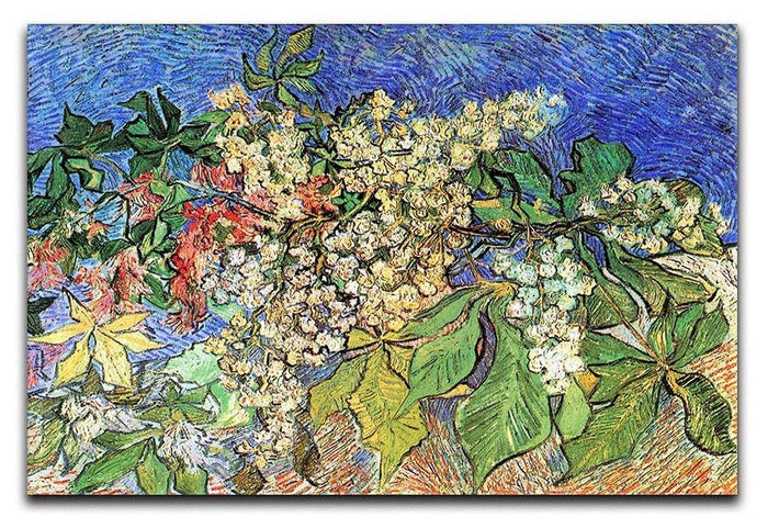 Blossoming Chestnut Branches by Van Gogh Canvas Print or Poster