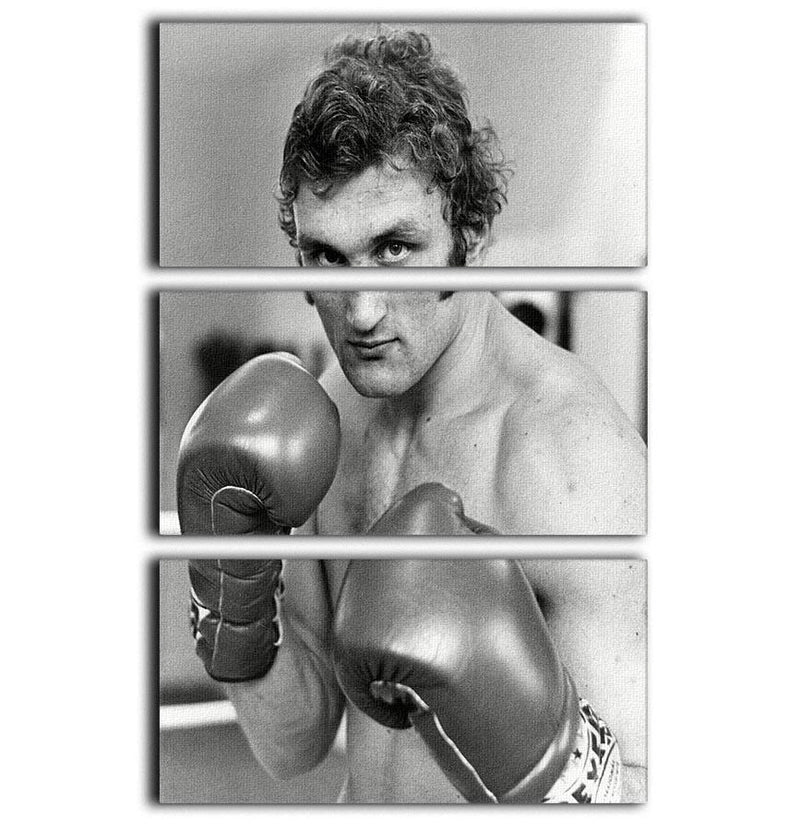 Boxer Joe Bugner 3 Split Panel Canvas Print - Canvas Art Rocks - 1