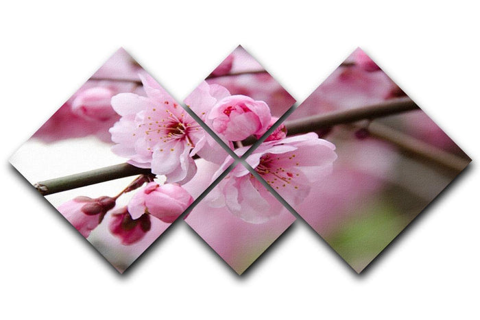 Broken blooming cherry branch 4 Square Multi Panel Canvas