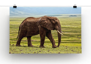 Brown Elephant Print - Canvas Art Rocks - 2